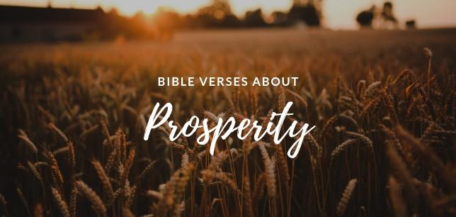 Bible Verses About Prosperity