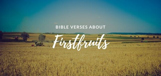 Bible Verses About Firstfruits