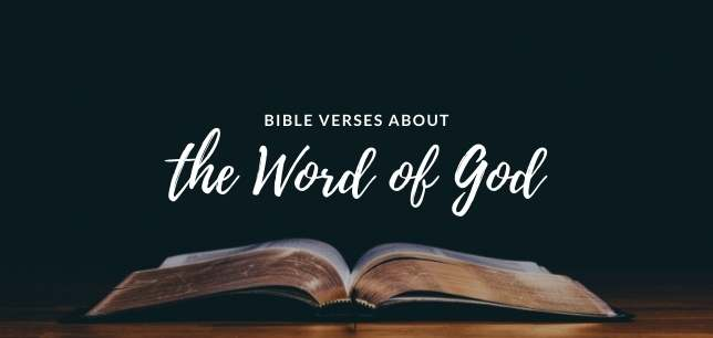 Bible Verses About the Word of God